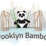 Brooklyn Bamboo Organic Baby Washcloths and Bibs