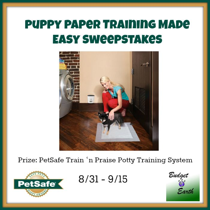 Puppy Paper Training Made Easy Sweepstakes {US | Ends 09/15}