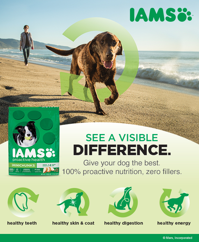 A Visible Difference ~ courtesy of IAMS and a Mommy/Puppy Spa Day