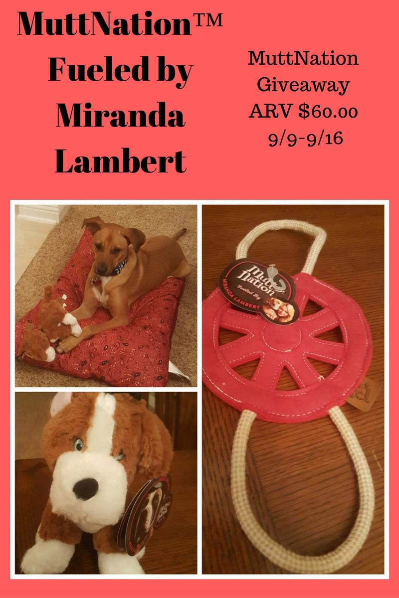 PetMate MuttNation Pet Prize Giveaway {US | Ends 09/16}