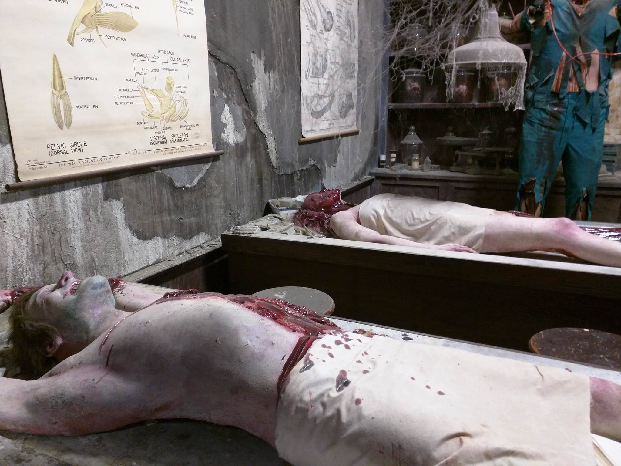 The Dent Schoolhouse {WARNING: Graphic Images}