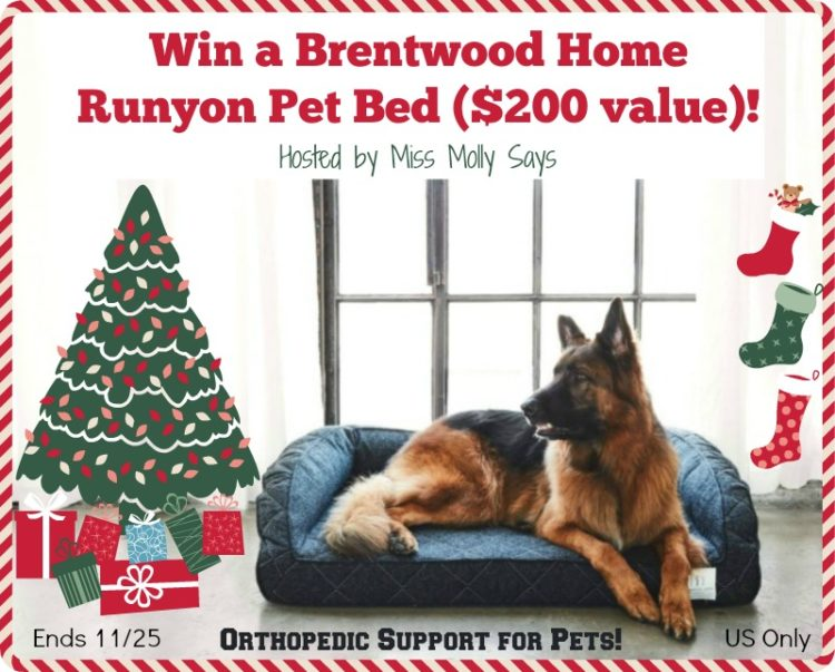 brentwood-home-pet-bed-giveaway-button